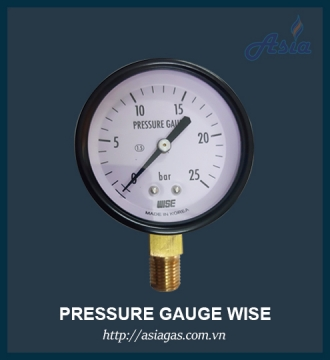 Đồng hồ đo áp suất gas Wise P110
